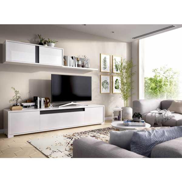 salon tv con puertas y estante a pared 3