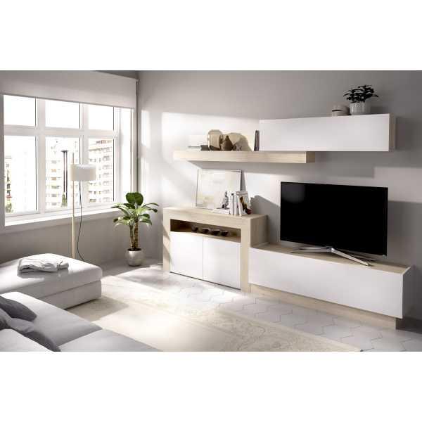 salon tv con puertas y modulos horizontales 3