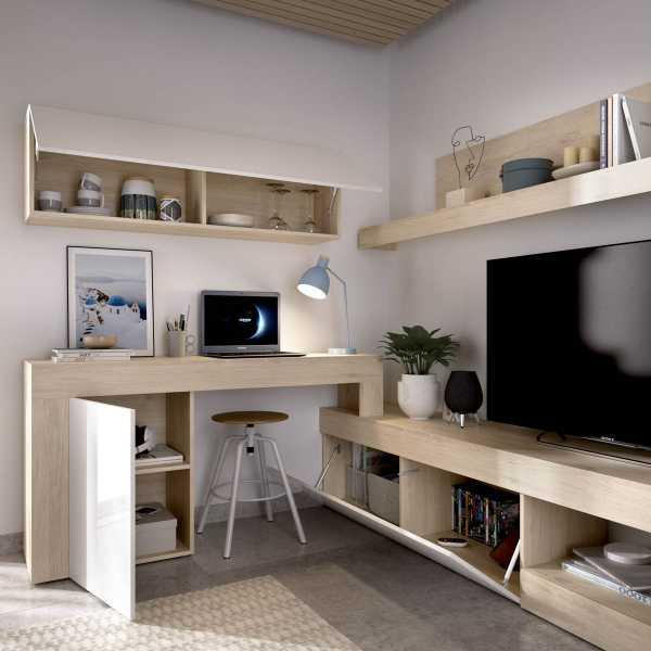 salon tv modular 1