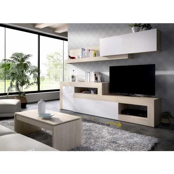 salon tv modular 2