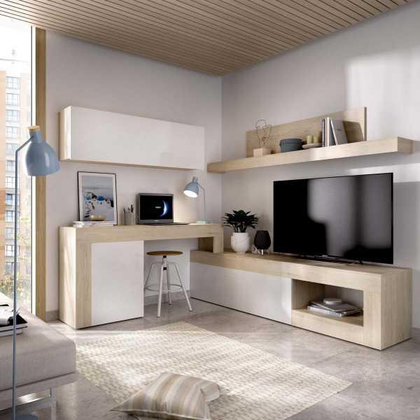 salon tv modular